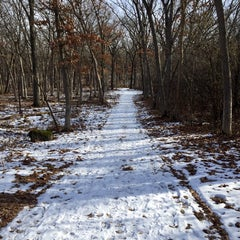 Photo taken at Lapham Peak Unit, Kettle Moraine State Forest by Kim on 12/7/2014