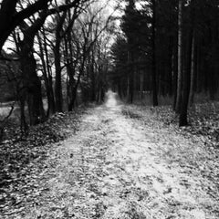 Photo taken at Lapham Peak Unit, Kettle Moraine State Forest by Kim on 12/21/2014