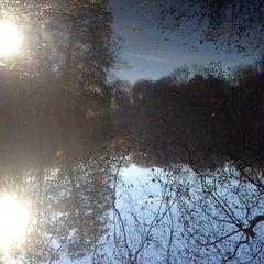 Das Foto wurde bei Neuer See von Bunz am 11/17/2014 aufgenommen