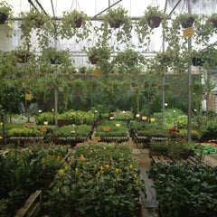 Photo taken at Floricultura Yamanaka by Arianna S. on 4/10/2013