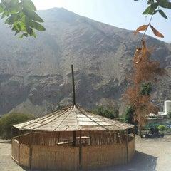 Photo taken at Camping El Olivo by Felipe M. on 1/31/2014