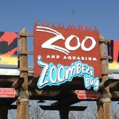 Photo taken at Columbus Zoo & Aquarium by Kristen W. on 4/5/2013