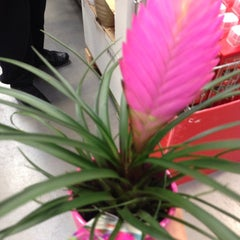 Photo taken at B&Q by Shayom A. on 1/28/2014