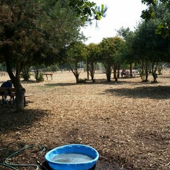 Photo taken at Alston Dog Park by Michael T. on 8/17/2015