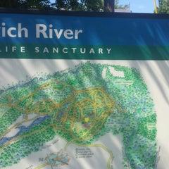 Photo taken at Mass Audubon Ipswich River Wildlife Sanctuary by Christopher H. on 6/15/2014