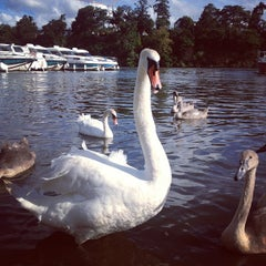 Photo taken at Sucé-sur-Erdre by Dina R. on 7/28/2013