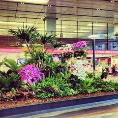 Photo taken at Changi Airport Terminal 1 by dixson l. on 2/21/2013