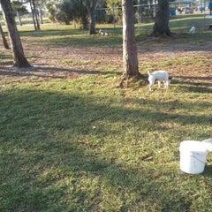 Photo taken at Estero Community Park Dog Run by Hank A. on 1/30/2012