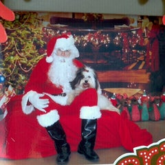 Photo taken at Petco by Kelly-Ann P. on 12/23/2012
