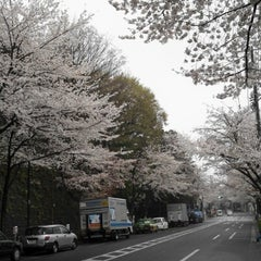 Photo taken at 哲学堂公園 by Hiroshi S. on 3/27/2013