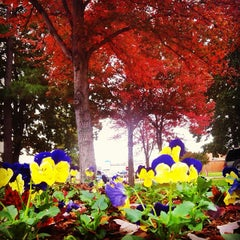 Photo taken at University of Arkansas at Little Rock by Ares M. on 10/30/2013