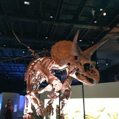 Photo taken at Houston Museum of Natural Science by Juan Carlos T. on 7/7/2013