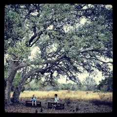 Photo taken at Lady Bird Johnson Wildflower Center by Kipling O. on 12/15/2012