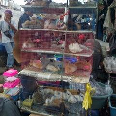 Photo taken at Pasar Burung Jatinegara by 💋✌dean✌💋 on 1/3/2013