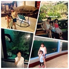 Photo taken at พิพิธภัณฑ์สัตว์น้ำราชมงคลตรัง by 🍓Laperla 🍰 . on 3/5/2015