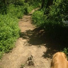 Photo taken at Big Gunpowder Trail by Kim S. on 5/8/2013