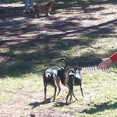 Photo taken at Estero Community Park Dog Run by Chris G. on 1/19/2014