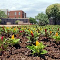 Photo taken at Hardin-Simmons University by Hardin-Simmons U. on 5/11/2013
