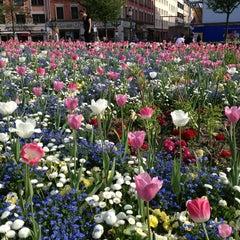 Photo taken at Gärtnerplatz by Héctor on 5/19/2013