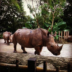 Photo taken at Singapore Zoo by Maggie W. on 2/15/2013