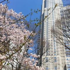 Photo taken at 新宿中央公園 (Shinjuku Central Park) by s t. on 3/16/2013