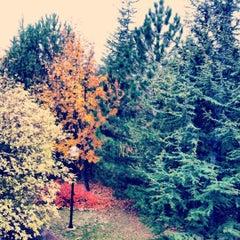 Photo taken at Bilkent Üniversitesi by Tany on 12/4/2012