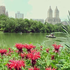 Photo taken at Central Park by Eliane v. on 6/29/2013