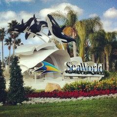 Photo taken at SeaWorld Orlando by Pedro S. on 11/20/2012