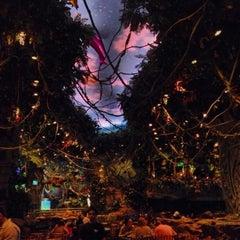 Photo taken at Rainforest Cafe Dubai by Marianna T. on 1/6/2014