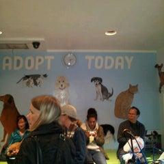 Photo taken at Humane Society of NY by Sharon C. on 10/11/2012