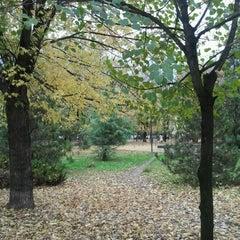 Photo taken at Parcul Eroilor by Gabriel V. on 11/14/2012