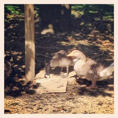 Photo taken at South Park Game Preserve by whit w. on 9/16/2012