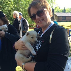 Photo taken at Iditarod Race Headquarters by Lisa C. on 6/13/2015