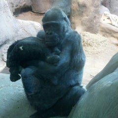 Photo taken at Erie Zoo by Laurie F. on 10/14/2012