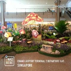 Photo taken at Changi Airport Terminal 2 by Alf H. on 6/6/2013