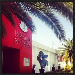 Photo taken at Museo de Historia Natural Ecatepec by ❣ɐəɹpuɐ❣ . on 11/27/2013