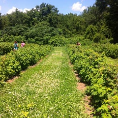 Photo taken at Connors Farm by Anna H. on 7/5/2013