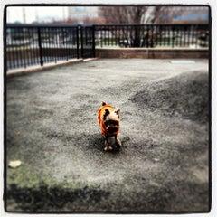 Photo taken at Sirius Dog Run by Biba C. on 12/22/2012