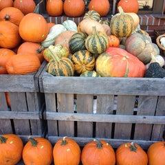 Photo taken at Whole Foods Market by Karolina S. on 9/19/2013