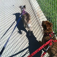 Photo taken at Poinsettia Park Dog Area by Adrienne S. on 8/28/2013