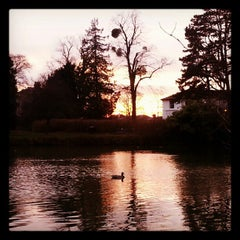 Photo taken at Pittville Park & Lake by Musa G. on 1/8/2013