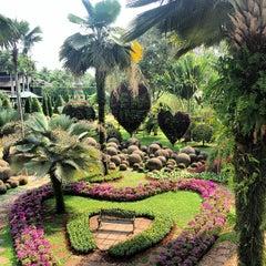 Photo taken at สวนนงนุช (Nong Nooch Garden & Resort) by Станислав Г. on 3/1/2013