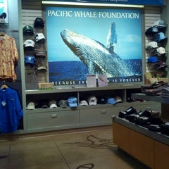 Photo taken at Pacific Whale Foundation by Ash Y. on 12/14/2012