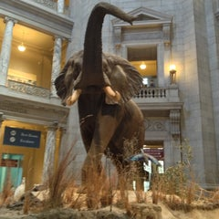 Foto tirada no(a) National Museum of Natural History por Matt M. em 5/15/2013