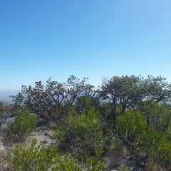 Photo taken at Cerro del Picacho by Eduardo on 3/2/2013
