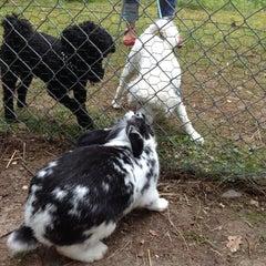 Photo taken at Mini Zoo Tibro by Pelle A. on 7/29/2012
