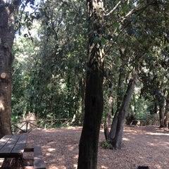 Photo taken at Riserva naturale Tor Caldara by Chiara on 8/25/2012
