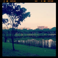 Photo taken at Punggol Park by Bradwin C. on 6/2/2013