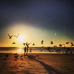 Photo taken at Black's Beach by Poyao H. on 12/23/2013