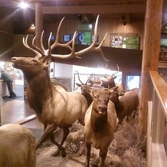 Photo taken at Jackson Visitor Center by Jim S. on 9/29/2013